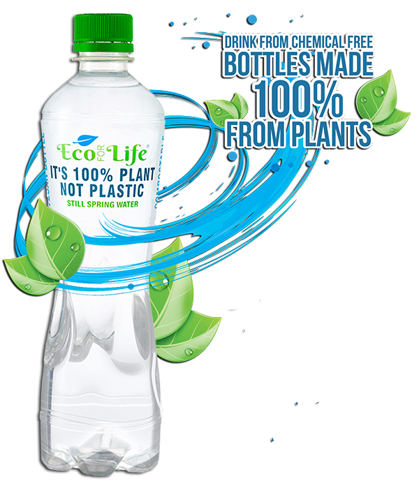 Plant Based Bottle