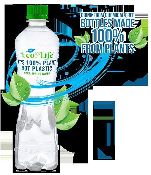 Plant Based Bottle